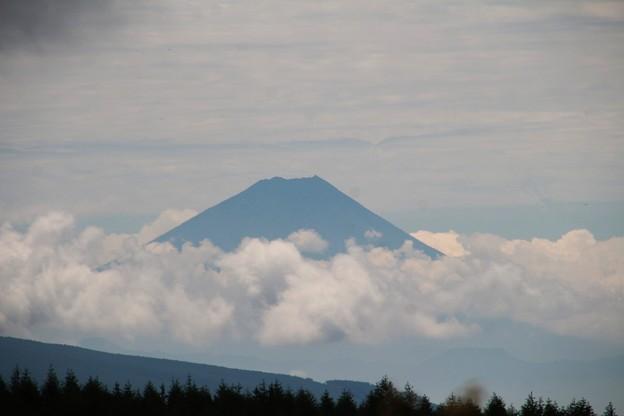 写真: 富士見台よりの富士山」