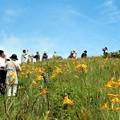 多くの観光客のニッコウキスゲ見物