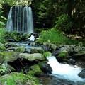 Photos: 唐沢の滝