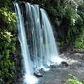 写真: 唐沢の滝