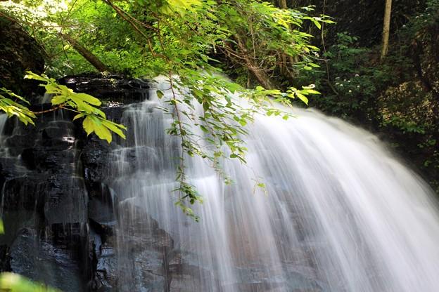 不動の滝は水量が多い