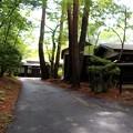 IMG_0224白林荘別荘敷地