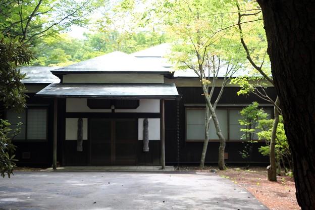 白林荘の玄関