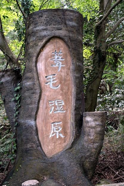 「葦毛湿原」石標