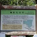 愛知県指定天然記念物葦毛湿原解説版