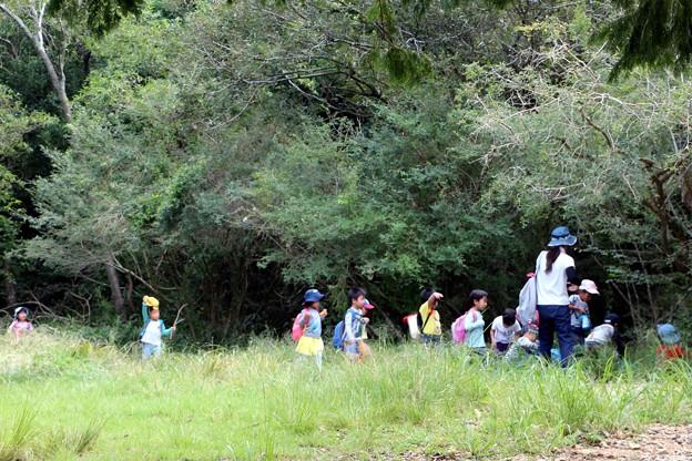 保育園児の湿原見物