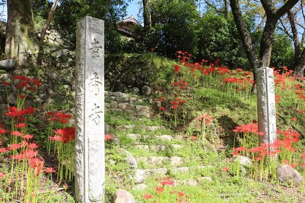 「幸秀寺」石碑