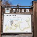 国定公園「蓼科高原」名所原生苔大滝案内図