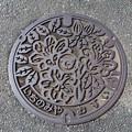 写真: (旧)愛知県宝飯郡一宮町(現・豊川市)マンホール