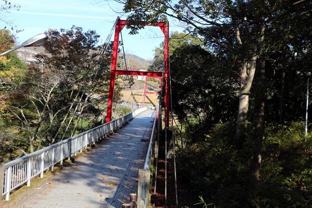 一級河川・豊川(とよがわ)に架かる笠岩橋