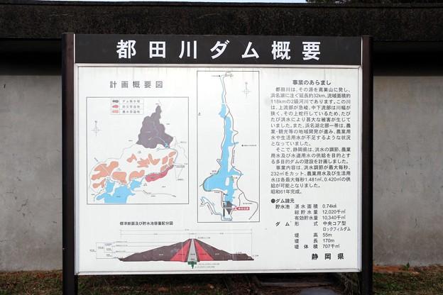 都田川ダム概要