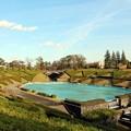 Photos: 噴水池全貌