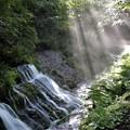 Photos: 渓谷流と斜光