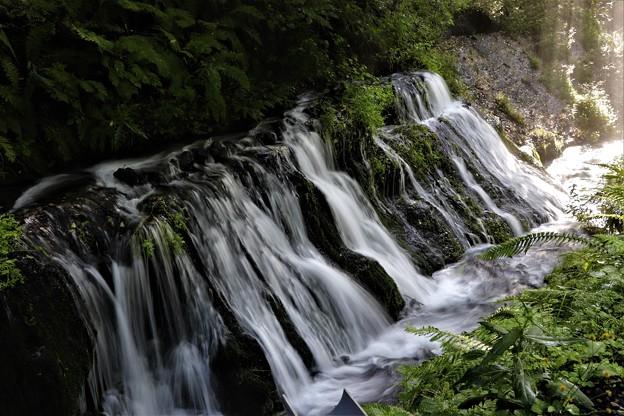 下流の渓流