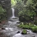 竜返しの滝の渓流