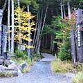 Photos: 白駒池入口ゲート