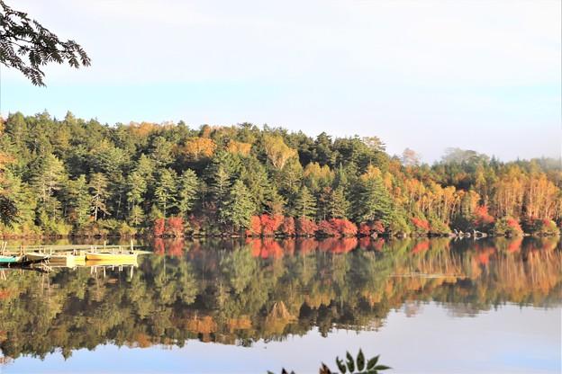 湖面に映す紅葉