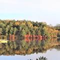 Photos: 湖面に映す紅葉