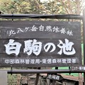Photos: 白駒の池銘板