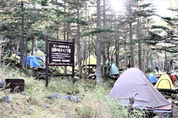 Photos: キャンプ場