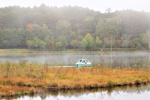 女神湖の草紅葉