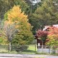 Photos: 秋の紅葉風景