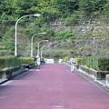 大原調整池(五葉湖)堰堤