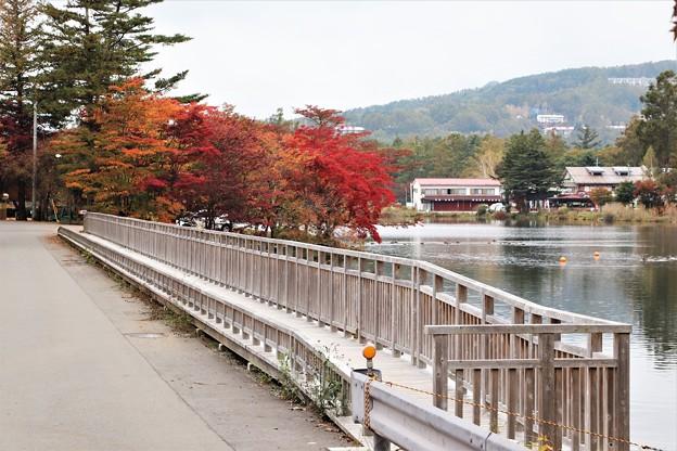 蓼科湖の陸橋