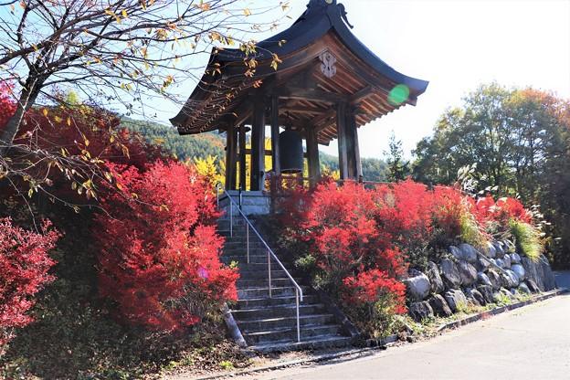 鐘楼と真っ赤なドウダンツツジの紅葉