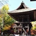 Photos: 県宝霊松寺山門