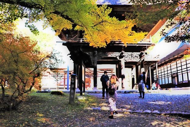 Photos: 霊松寺見物観光客