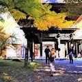 霊松寺見物観光客