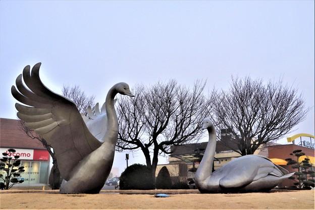 スワンガーデン「白鳥アブジェ」