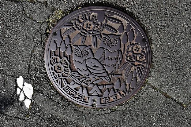 愛知県南設楽郡鳳来町(現・新城市)マンホール