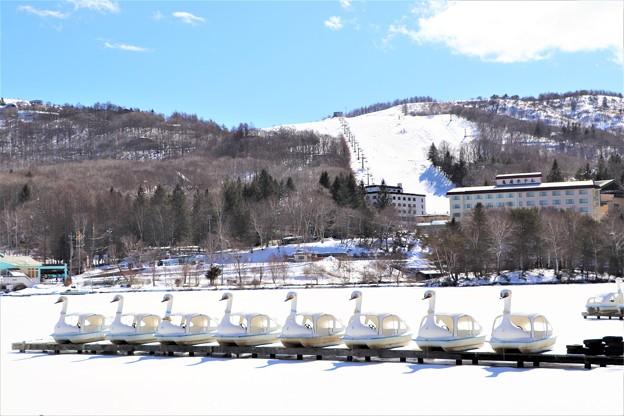 凍結白鳥ボートの白樺湖