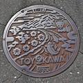 愛知県豊川市マンホール