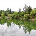 蓼科湖水鏡