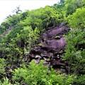 Photos: 千畳岩