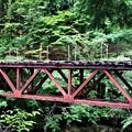 Photos: 旧森林鉄道橋
