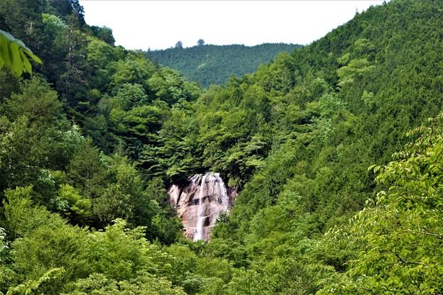 Photos: 雨現の滝