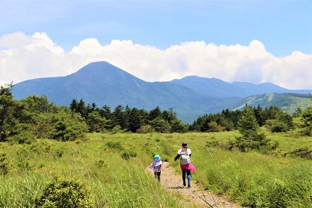 登山散策路を行く親子