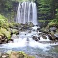 IMG_0298唐沢の滝と渓流
