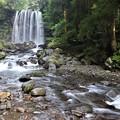 IMG_0292唐沢の滝と渓流