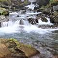 大洞川へ流れ込む渓流