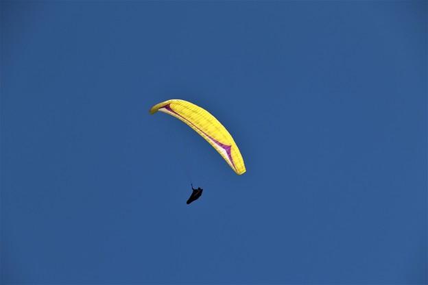 大空にパラグライダー