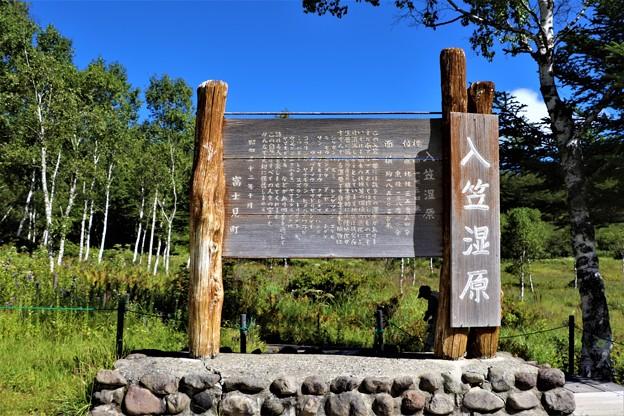 Photos: 入笠山湿原