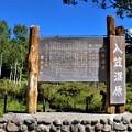 入笠山湿原