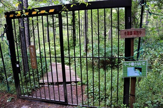 Photos: 鹿除け出入口柵