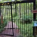 鹿除け出入口柵