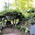 Photos: 庭園口